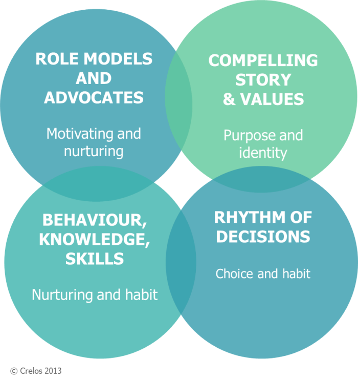 role models and advocates, compelling stories & values, Rhythm of decisions, Behaviour knowlage and skill